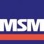 msm-group-llc-logo-958BBA3F41-seeklogo.com